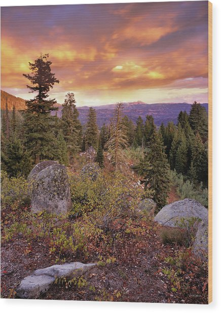Trinity Mountains Wood Print by Leland D Howard