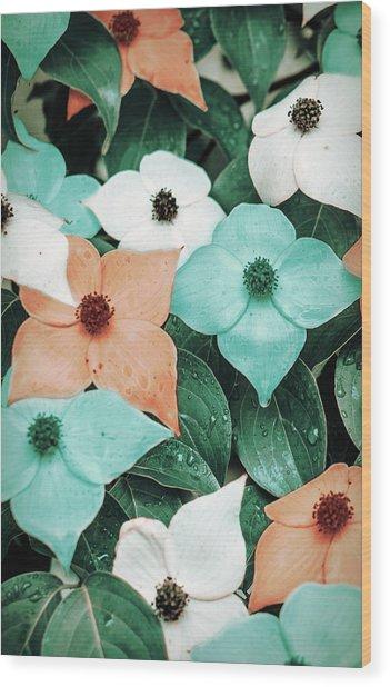 Tropical Dogwood Flowers Wood Print
