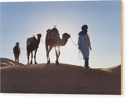 Tuareg Man With Camel Train, Sahara Wood Print