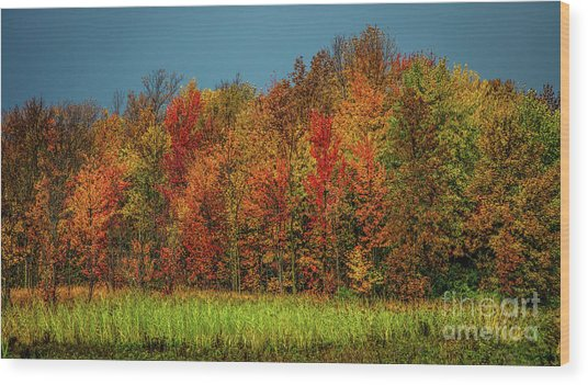 Tug Hill Colors Wood Print