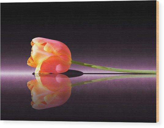 Tulip Reflection Wood Print