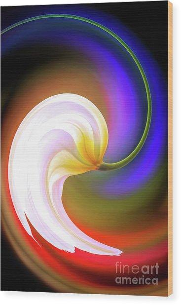 Tulip Twirl Wood Print