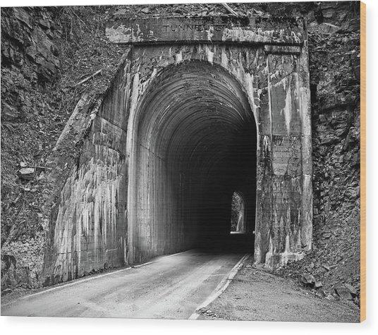Tunnel Wood Print by Leland D Howard