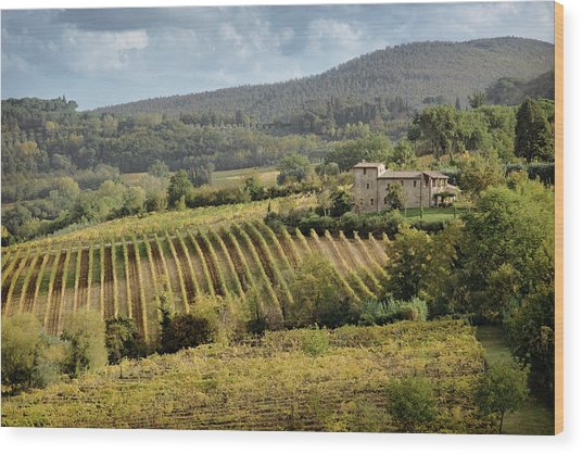 Tuscan Valley Wood Print