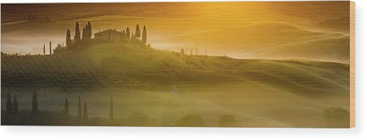 Tuscany In Gold Wood Print