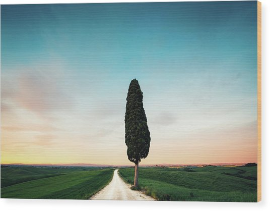 Tuscany Road Wood Print by Borchee