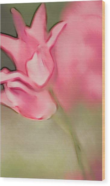 Two Pink Lily Flowering Tulips Wood Print by Maria Mosolova