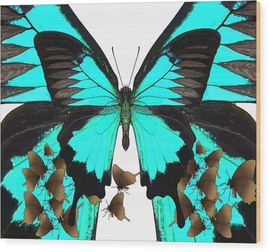 U Is For Ulysses Butterfly Wood Print