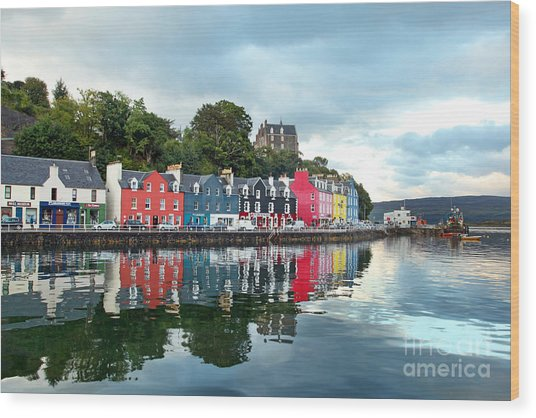 Uk Western Scotland Isle Of Mull Wood Print
