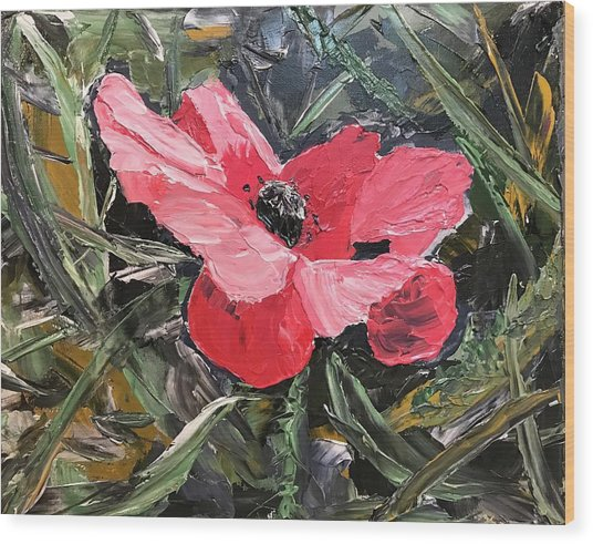 Umbrian Poppies 1 Wood Print