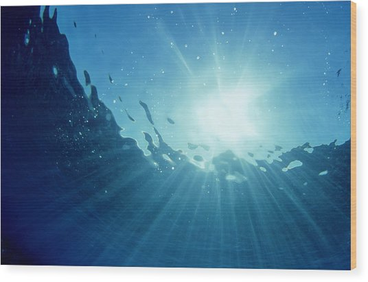 Underwater Looking Up Teahupoo, Tahiti Wood Print by Scott Winer