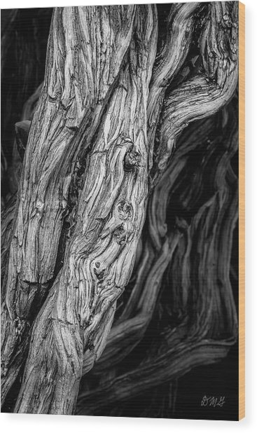 Wood Print featuring the photograph Untitled Viii Bw by David Gordon
