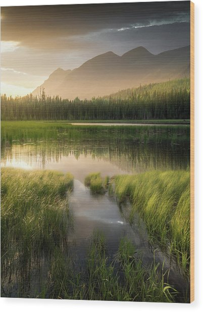 Upper Whitefish Golden Light / Whitefish, Montana  Wood Print