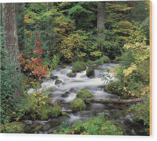 Upper Willamette River Wood Print by Leland D Howard