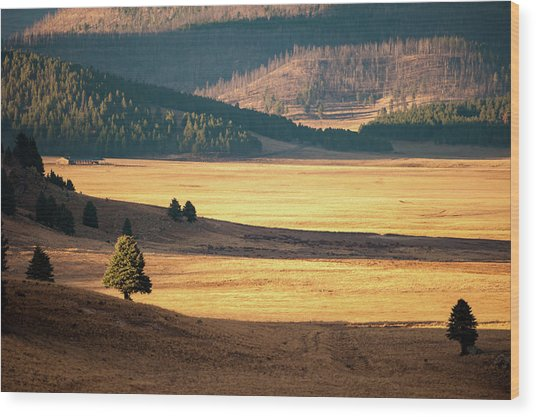 Valles Caldera Detail Wood Print