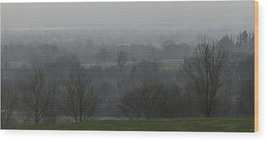 Valley Dawn  Wood Print