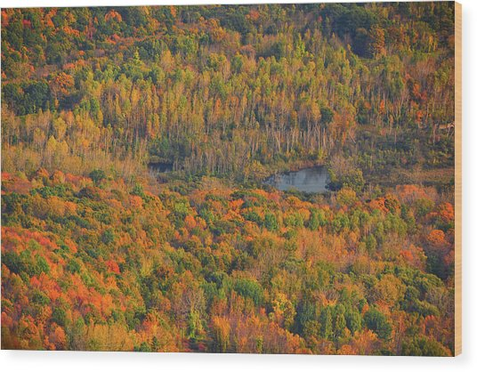 Wood Print featuring the photograph Valley From The Summit Of Mount Greylock by Raymond Salani III