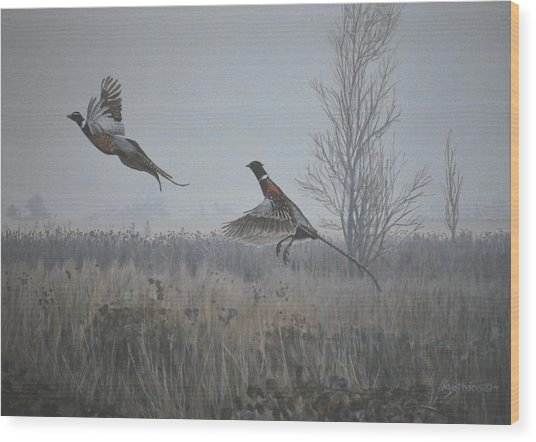 Valley Pheasants Wood Print