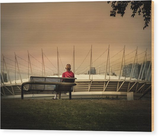 Vancouver Stadium In A Golden Hour Wood Print