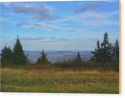 Wood Print featuring the photograph Vermont From The Summit Of Mount Greylock by Raymond Salani III