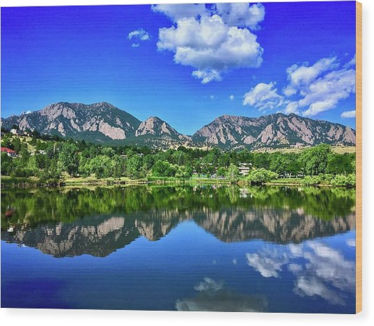 Wood Print featuring the photograph Viele Lake by Dan Miller