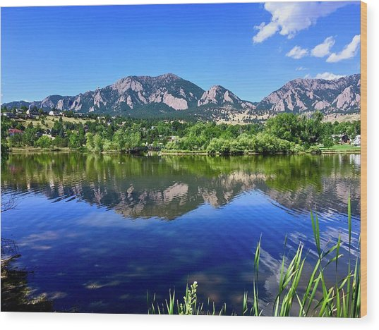 Wood Print featuring the photograph Viele Lake 3 by Dan Miller