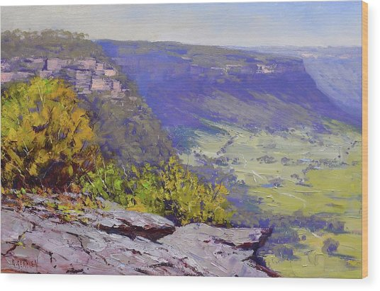 View From Hassons Wall Lithgow Wood Print