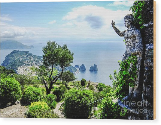 View From Monte Solaro To The Wood Print