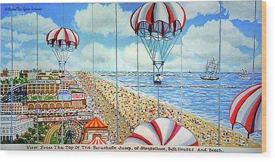 View From Parachute Jump Towel Version Wood Print