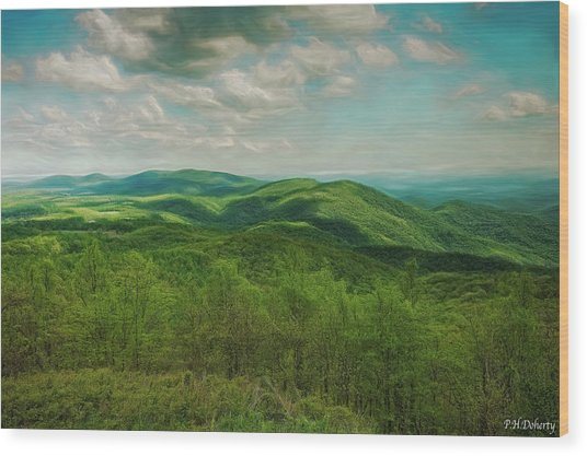 View From Rocky Knob  Wood Print
