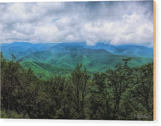 View From The Parkway #6 Wood Print