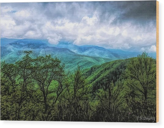 View From The Parkway #7 Wood Print
