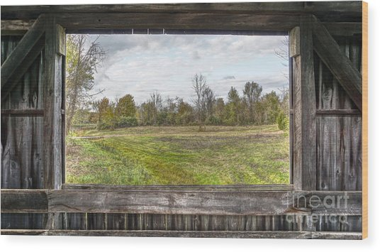 View Into Ohio's Nature Wood Print