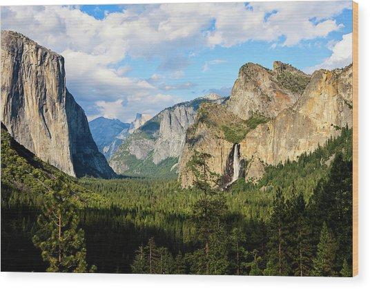 View Of Bridalveil Falls, El Capitan Wood Print by Danita Delimont