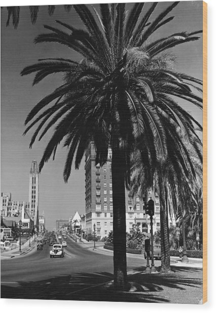 View Of Wilshire Boulevard, Los Angeles Wood Print by R. Gates