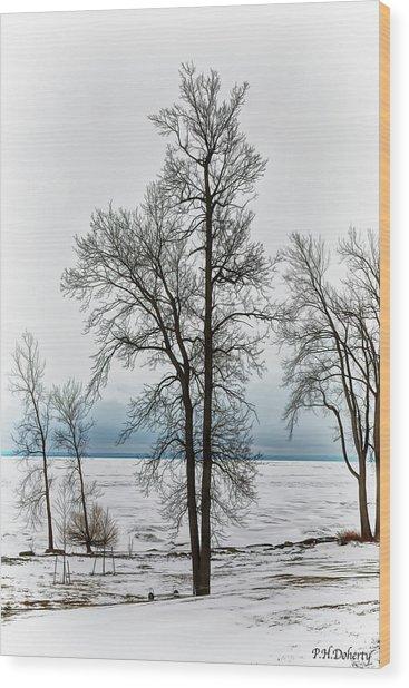 View To The Lake Wood Print