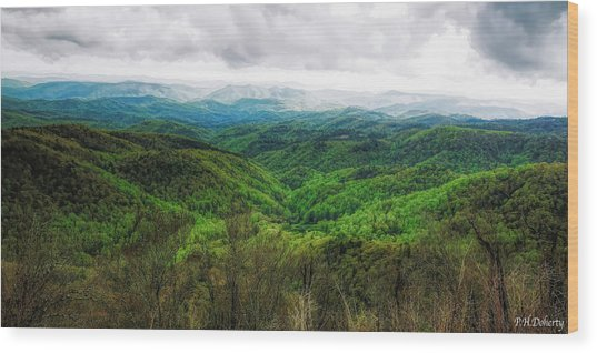 Views From The Parkway#2 Wood Print