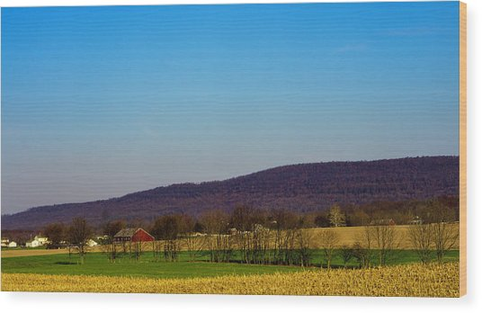 Virginia Mountain Landscape Wood Print