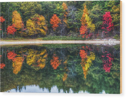Walden Pond Fall Foliage Concord Ma Reflection Wood Print
