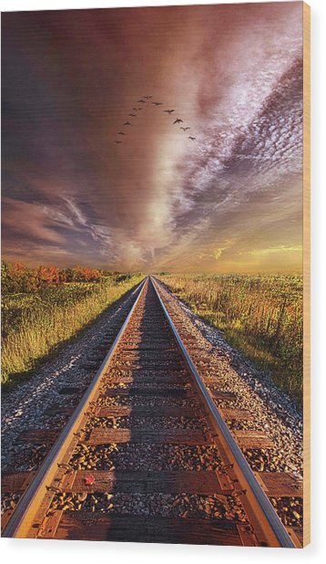 Wood Print featuring the photograph Walk The Line by Phil Koch