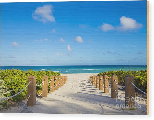 Walkway To Famous South Beach, Miami Wood Print