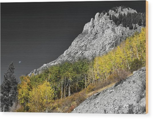 Wood Print featuring the photograph Waning Gibbous Moon Autumn Monarch Pass Bwsc by James BO Insogna