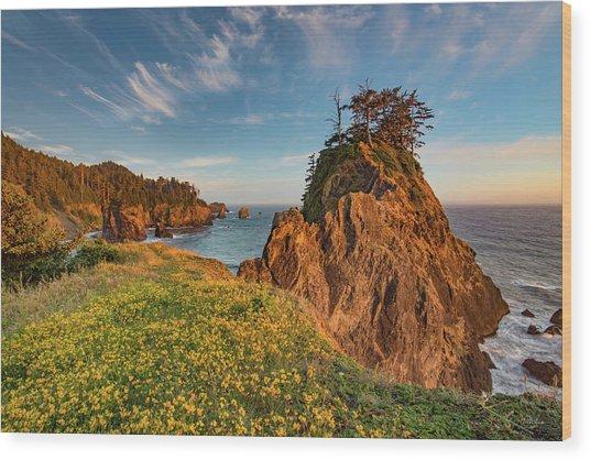 Warm And Peaceful Coast Wood Print by Leland D Howard