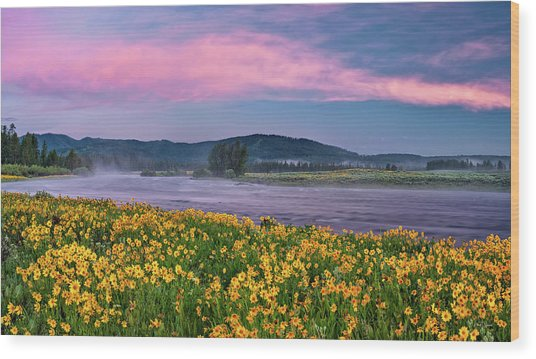 Warm River Spring Sunrise Wood Print