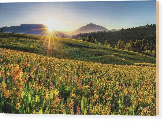 Warm Spring Sunrise 2 Wood Print by Leland D Howard