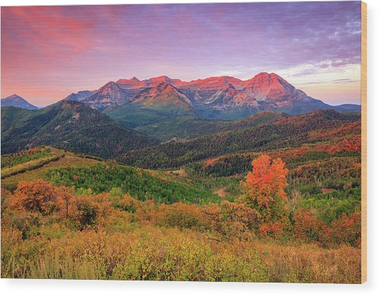 Wasatch Back Autumn Morning Wood Print