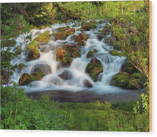 Wasatch Range Cascade Wood Print by Leland D Howard