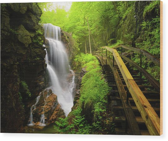 Water Falls In The Flume Wood Print by Noppawat Tom Charoensinphon