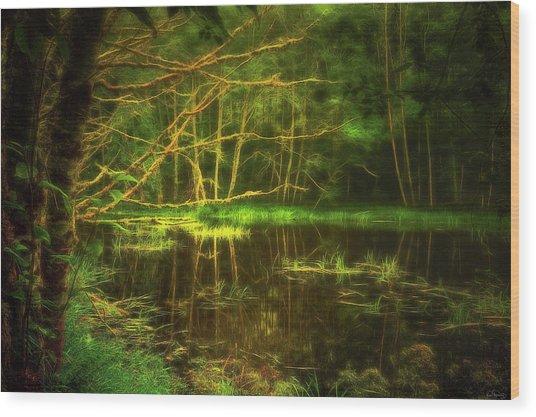 Water Nymph Habitat Wood Print