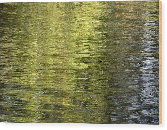 Water Reflection_521_17 Wood Print